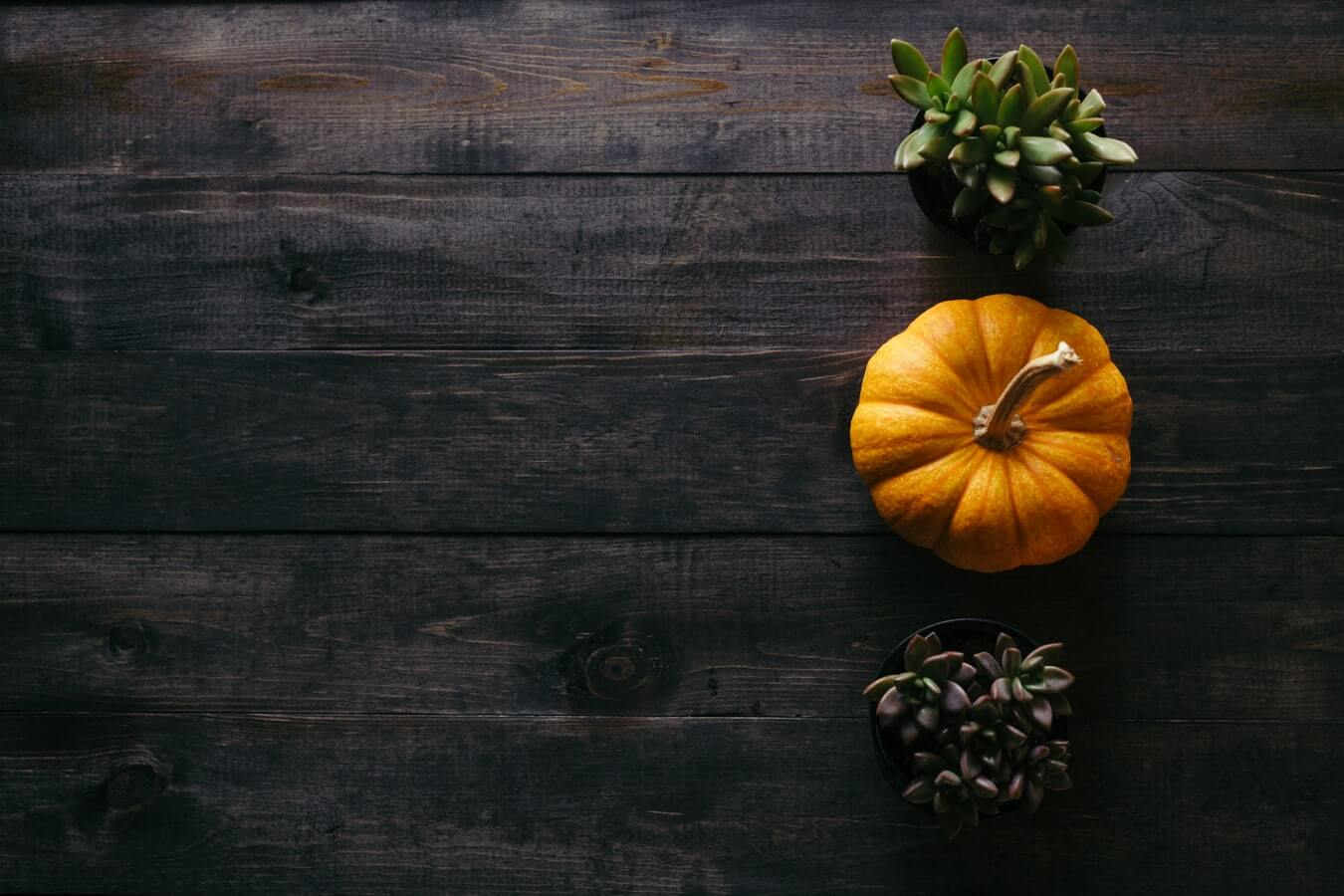 OBI & OTRADI October 2018 Newsletter